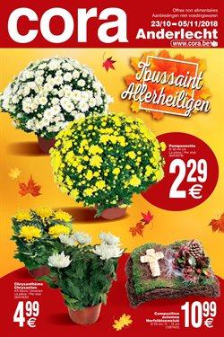 Promos de Supermarchés dans le dépliant de Cora à Bruxelles