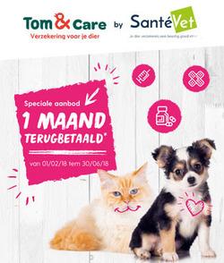 Promos de Tom & Co dans le dépliant à Mons