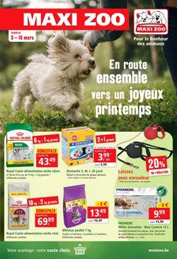 Promos de Bricolage et Jardin dans le prospectus de Maxi Zoo à Gent ( 2 jours de plus )