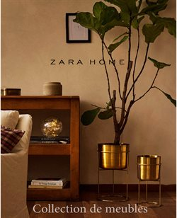 Promos de Meubles et Décoration dans le prospectus à ZARA HOME ( Plus d'un mois )