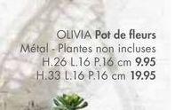 OLIVIA Pot de felurs offre à 9,95€