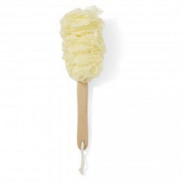Fleur de douche forme brosse pour le dos  offre à 2,99€