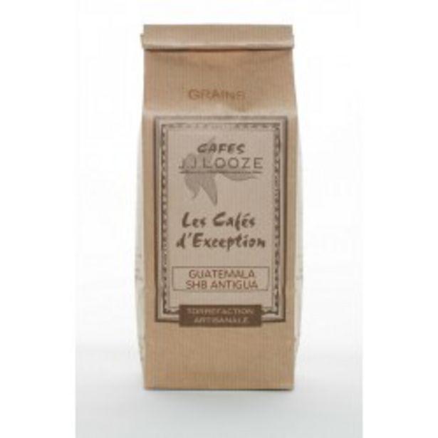 Café en Grains Guatemala Antiga 500 g offre à 15€